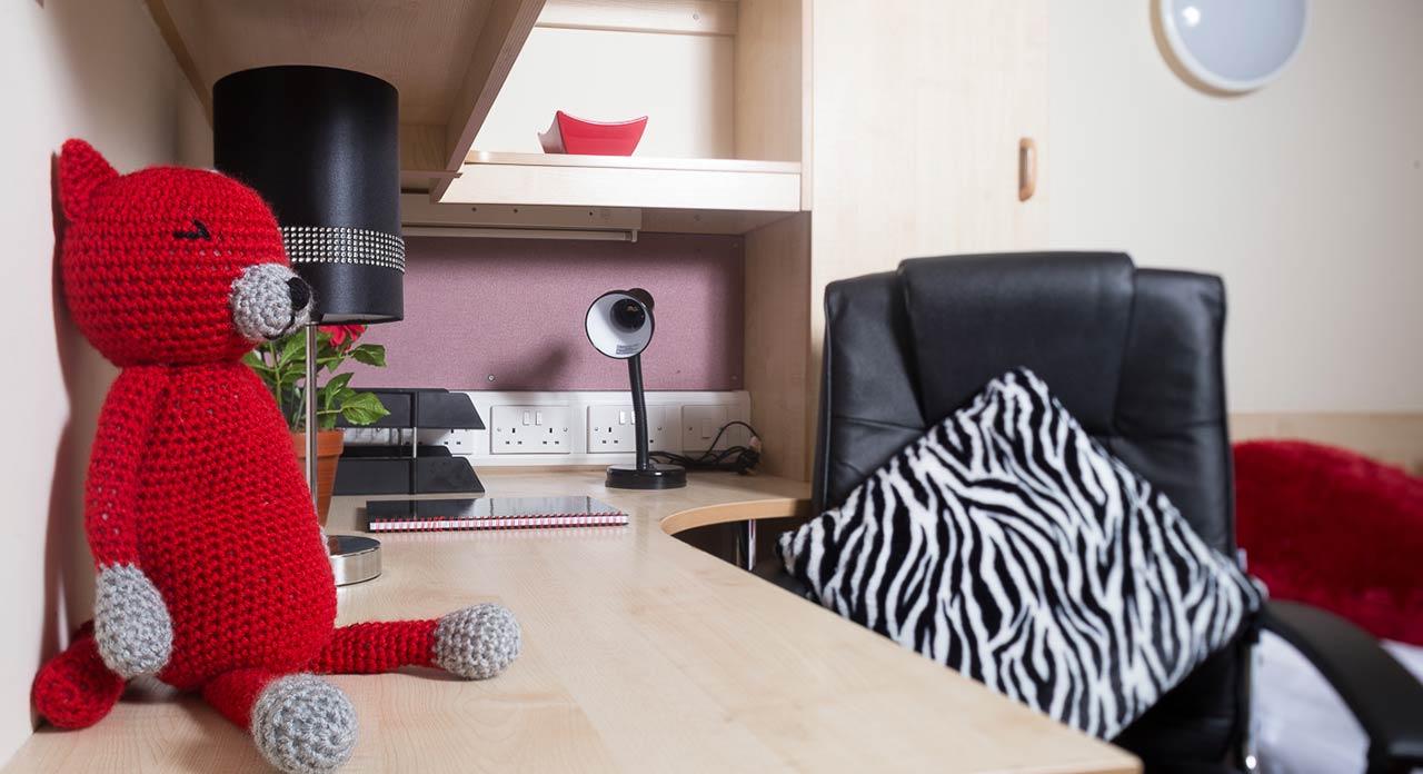 Q3 Standard Studio student apartment